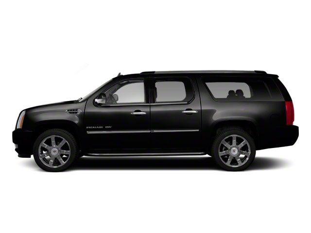 2010 Cadillac Escalade Esv Premium In Edmond Ok Jackie Cooper Mini